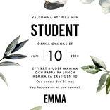 Studentkort bladligt