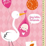 Födelsetavla - Stork