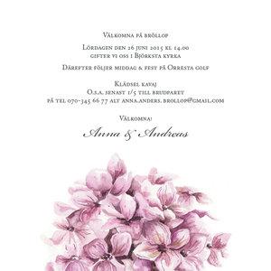 Hortensia kvadrat