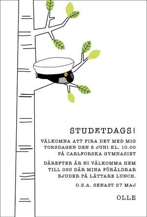 Studentkort Björk
